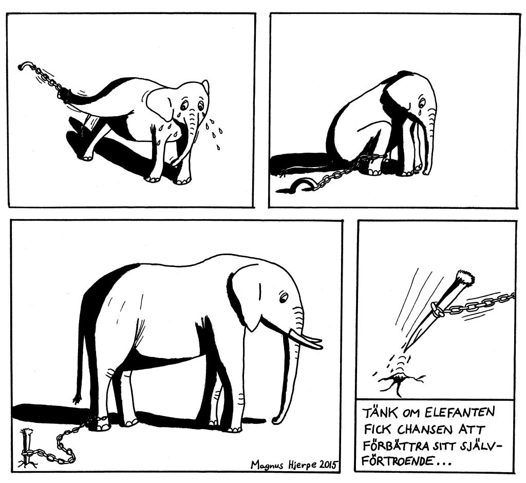 Elefantungen försöker komma oss. Sen ger den upp. Som vuxen är elefanten fortfarande uppgiven. Tänk om den hade bättre självförtroende.